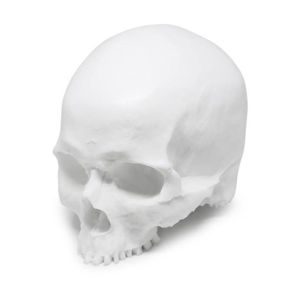 A Pound Of Flesh - Yorick Skull