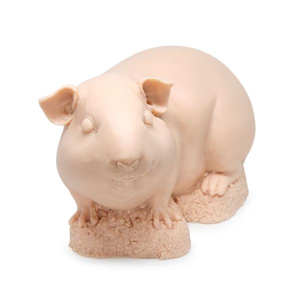A Pound Of Flesh - Meerschweinchen